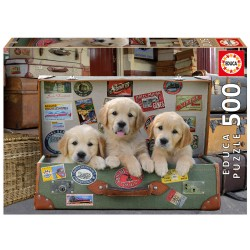 17645 Puppies in the...