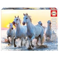 17105 White Horses At...