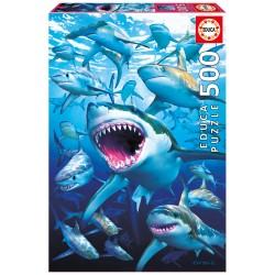 17085 Shark Club Educa 500...