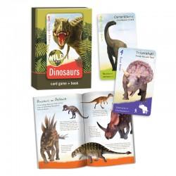 310 Wild Cards:  Dinosaurs