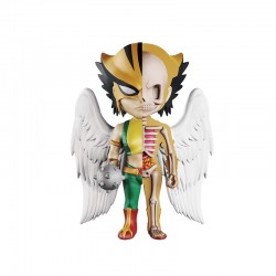93457 XXRAY DC Comics Hawkgirl