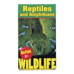 235 Reptiles and Amphibians...