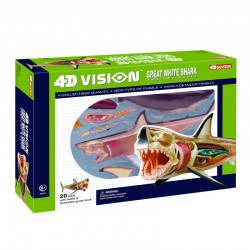 26111 4D Vision Great White...