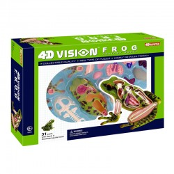 26104 4D Vision Frog...