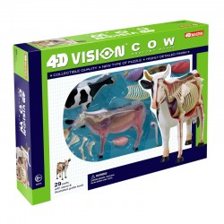 26100 4D Vision Cow Anatomy...