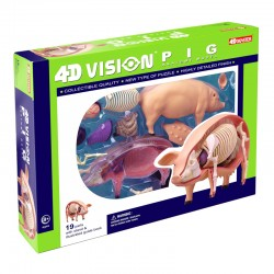 26102 4D Vision Pig Anatomy...