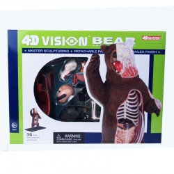 26098 4D Vision Brown Bear...
