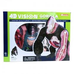 26090 4D Vision Gorilla...