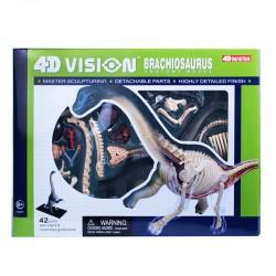 26094 4D Vision...