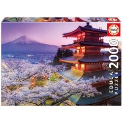 16775 Mount Fuji Japan...